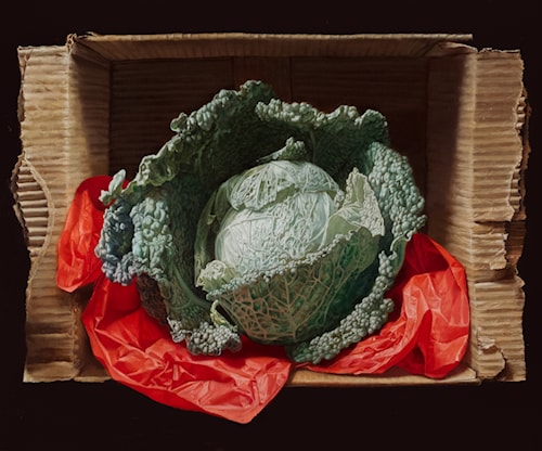Savoy Cabbage in a Box