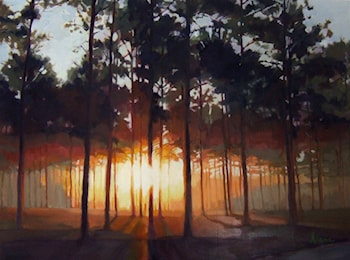 Sunrise through the Pines by Alana Knuff