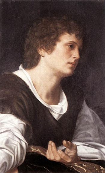 Bust of a Youth by Giovanni Girolamo Savoldo