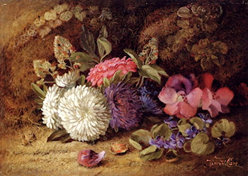 Asters,Pansies And Violets by Vincent Clare