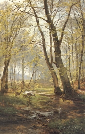 A Woodland Scene With Deer by Carl Fredrik Aagard