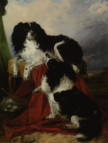 King Charles Spaniels by Richard Ansdell