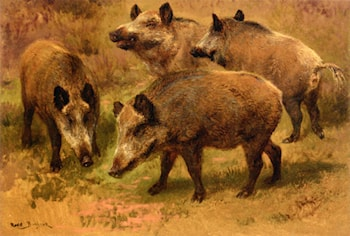 Four Boars in a Landscape by Rosa Bonheur