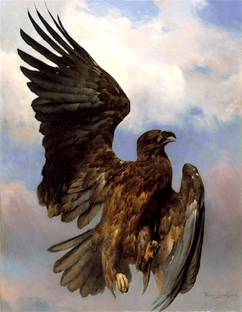 The Wounded Eagle by Rosa Bonheur