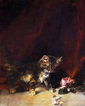 Playing Kitten by Francisco Domingo y Marques