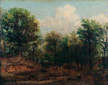 A Wood by John Constable